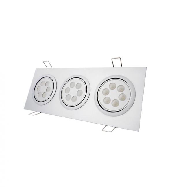 Grid down light factory,  LED Grid down light, Grid down light manufacturer, Down light, Two heads down light